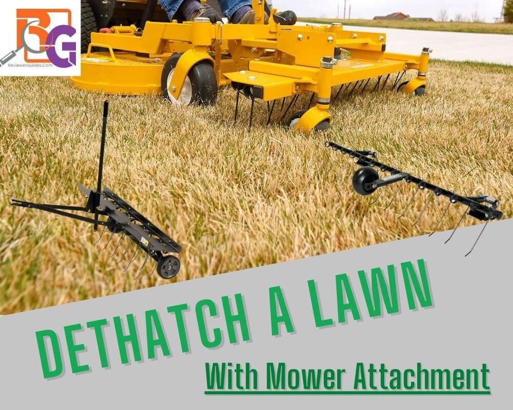 How to Dethatch a Lawn