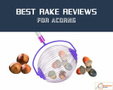 How to Choose Best Rake for Acorns!